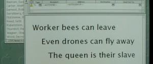 worker-bees-can-fly-away